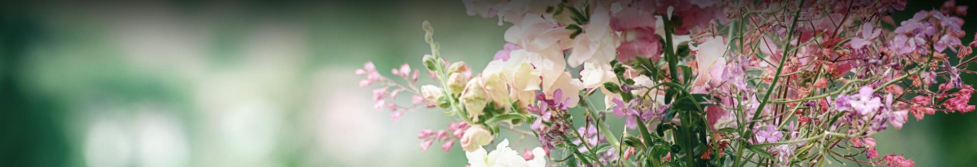 Biało-różowy bukiet kwiatów